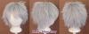 Shiki - Silver Gray