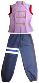 Naruto Ten Ten Costume