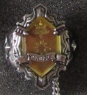 Hitman Reborn Evolved Vongola Ring Sun