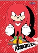 Sonic the Hedgehog Knuckles Wall Scroll