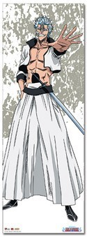 Bleach Grimmjow Lifesize Wall Scroll Poster