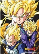 Dragonball Z SS Group Wall Scroll