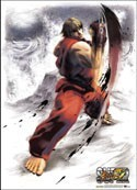 Street Fighter Wall Scroll