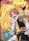 Fairy Tail Natsu and Happy Fire Wall Scroll Poster