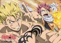 Fairy Tail Natsu and Laxus Wall Scroll Poster (U.S. Customers Only)