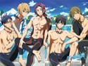 Free! - Iwatobi Swim Club Group Wall Scroll Poster (U.S. Customers Only)