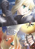 Fate Zero Saber Wall Scroll