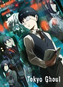 Tokyo Ghoul Kaneki Before and After Wall Scroll Poster