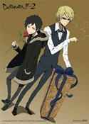 Durarara!! Izaya and Shizuo Wall Scroll Poster