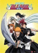 Bleach Group Wall Scroll