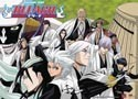 Bleach 13 Captains Long Wall Scroll (U.S. Customers only)