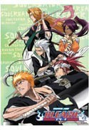 Bleach Soul Reaper Wall Scroll