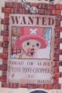 One Piece Chopper Wanted Key Chain