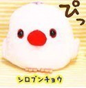 Kotori Tai Fluffy Birds 3'' White Busoyayou Amuse Prize Plush Key Chain