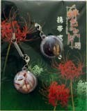 Hiiro no Kakera Screen Wiper Phone Strap Set Green
