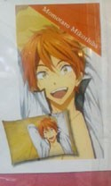 Free! - Iwatobi Swim Club Mikoshiba Pillow Case Vol. 2