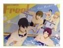 Free! - Iwatobi Swim Club Poolside Microfiber Blanket