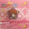 Magical Girl Lyrical Nanoha A's Nanoha Pin