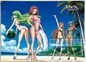 Code Geass Beach Tapestry Prize Poster