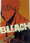 Bleach Orange Close Up Ichigo Post Card Sized Sticker