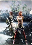 Final Fantasy Lightning and Serah Clear File Folder