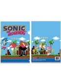 Sonic The Hedgehog Game Screen File Folder
