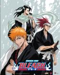 Bleach Wall Scroll