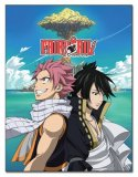 Fairy Tail Natu and Gajeel Fleece Throw Blanket