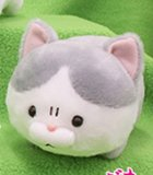 Bucha Neko-san 5'' Gray and White Amuse Prize Plush