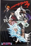 Bleach Shinigami and Ichigo Group Post Card Sized Sticker