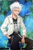 Bleach Hitsugaya White Jacket Post Card