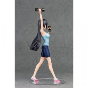 How Heavy are the Dumbbells You Lift? Akemi Souryuuin 1/7 Scale FOTS Figure